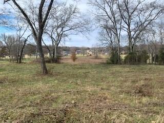 515 Brummitt Rd, Castalian Springs, TN 37031 - Castalian Springs, TN real estate listing