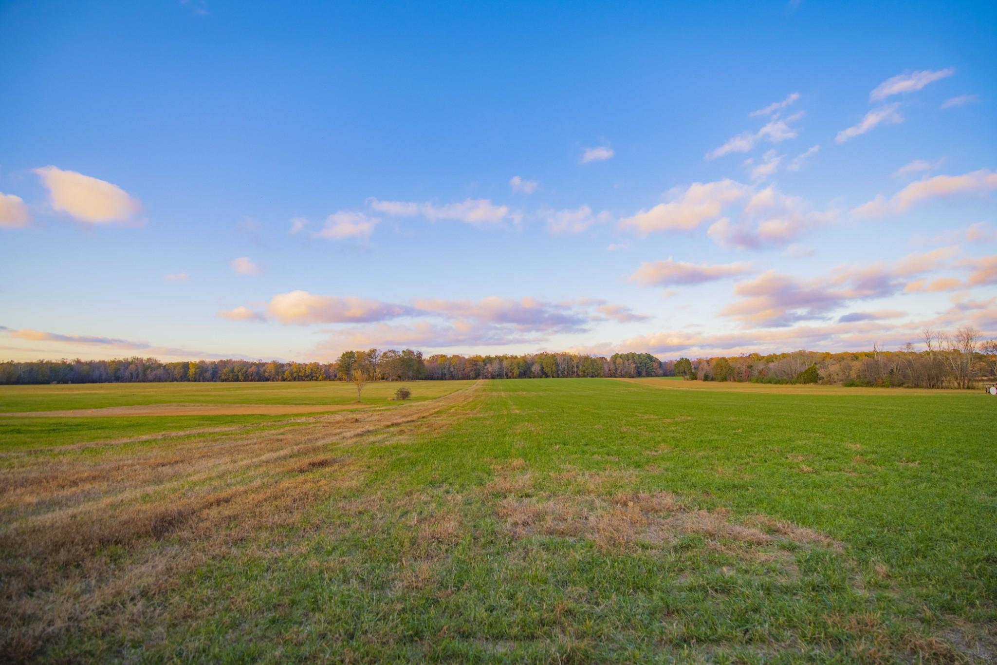 0 Bell Rd, Morrison, TN 37357 - Morrison, TN real estate listing