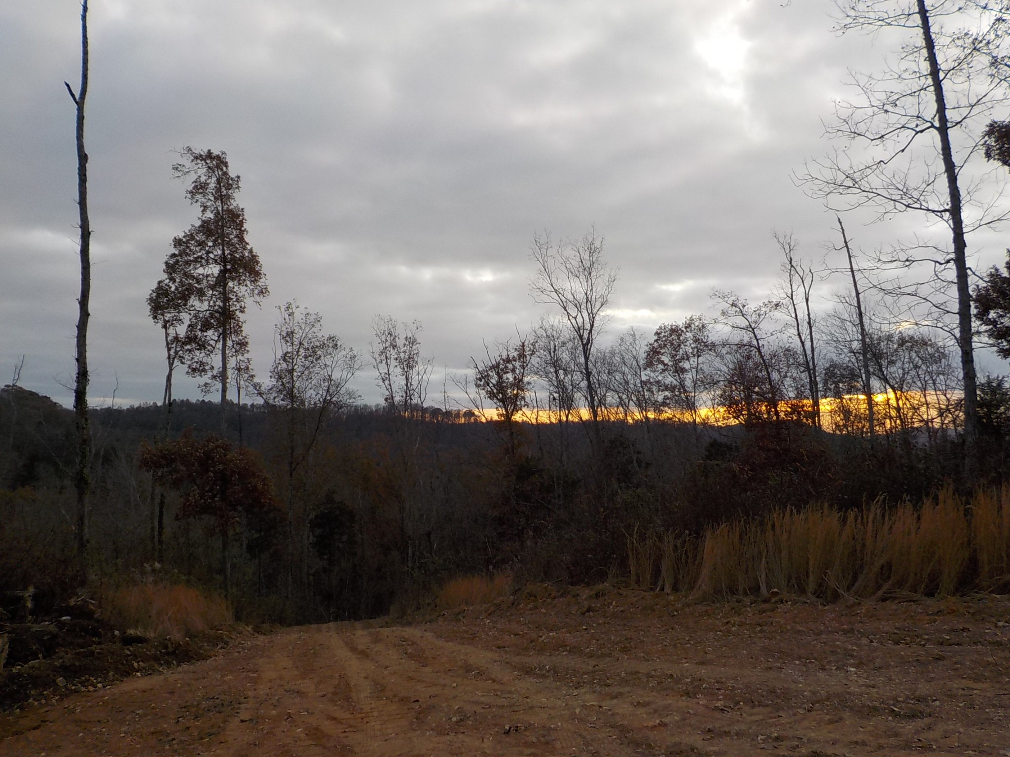 0 Old Wolf Hill Rd, Bethpage, TN 37022 - Bethpage, TN real estate listing