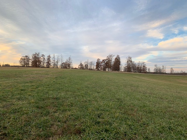 3 W Lick Creek Rd, Primm Springs, TN 38476 - Primm Springs, TN real estate listing