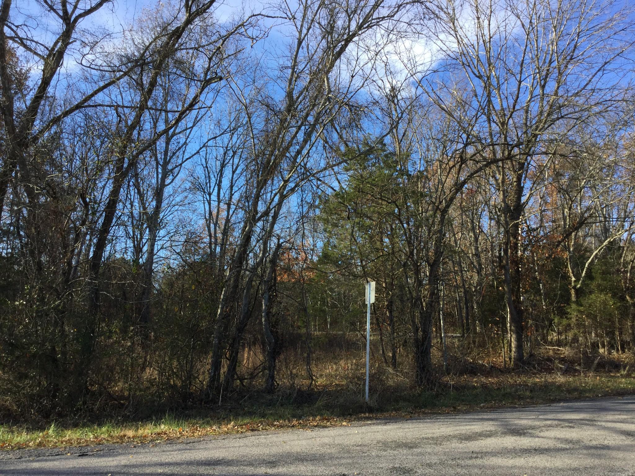 0 Richardson Rd, Lewisburg, TN 37091 - Lewisburg, TN real estate listing