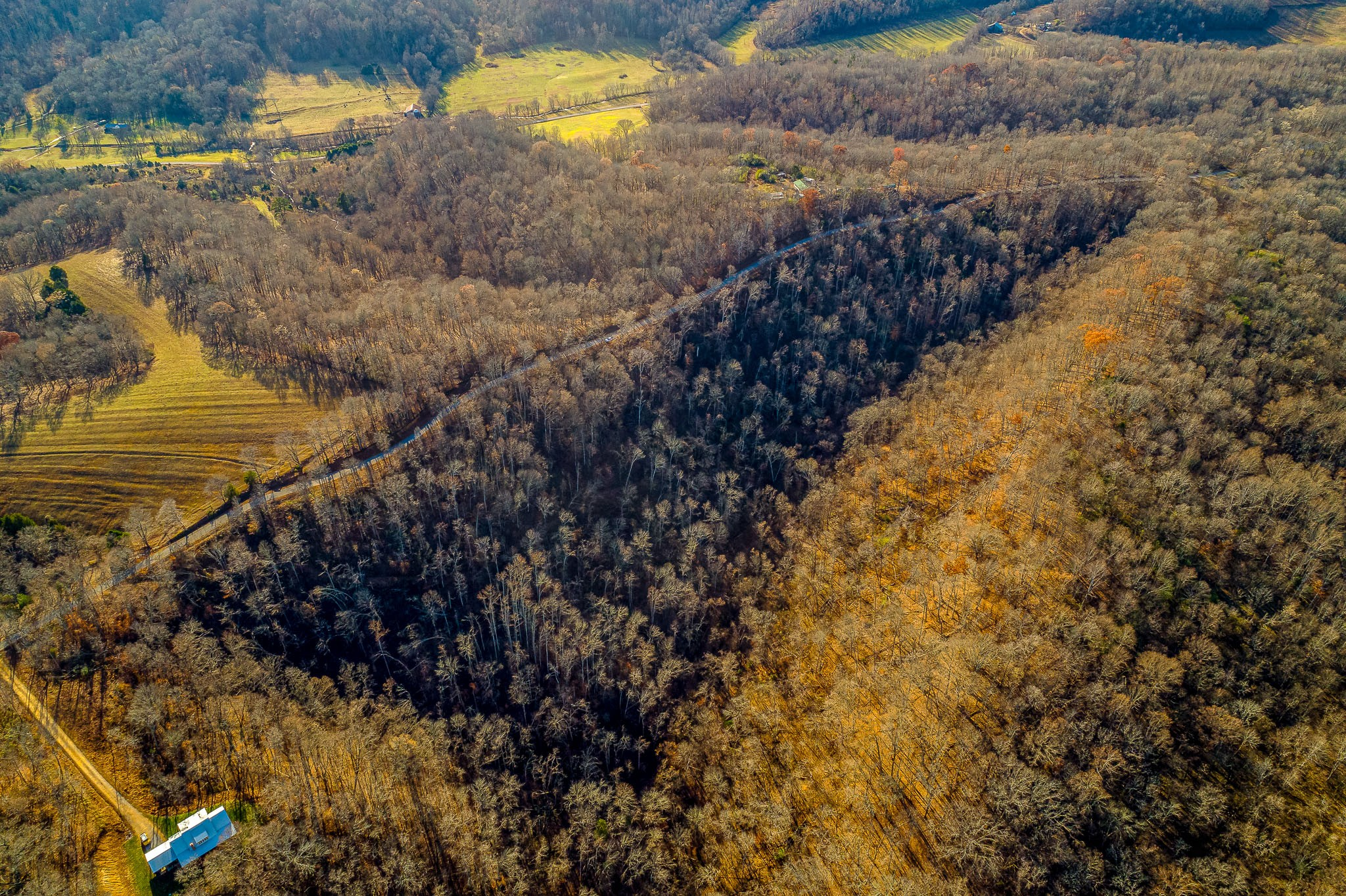 2 Southpoint Ridge Rd Property Photo - Hampshire, TN real estate listing