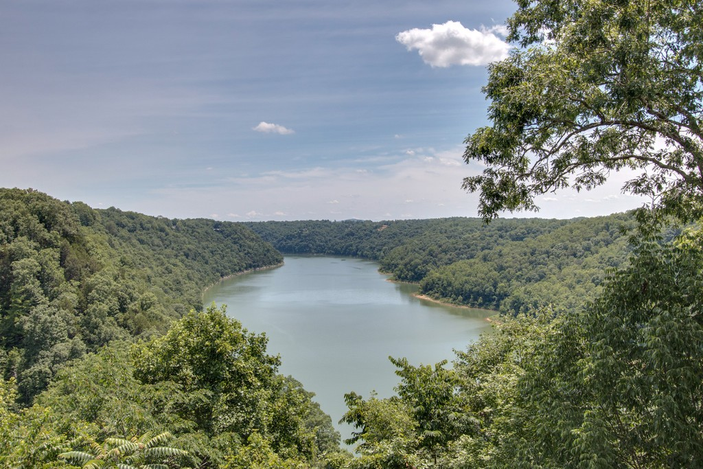 238 Fish Hook Dr Property Photo - Smithville, TN real estate listing