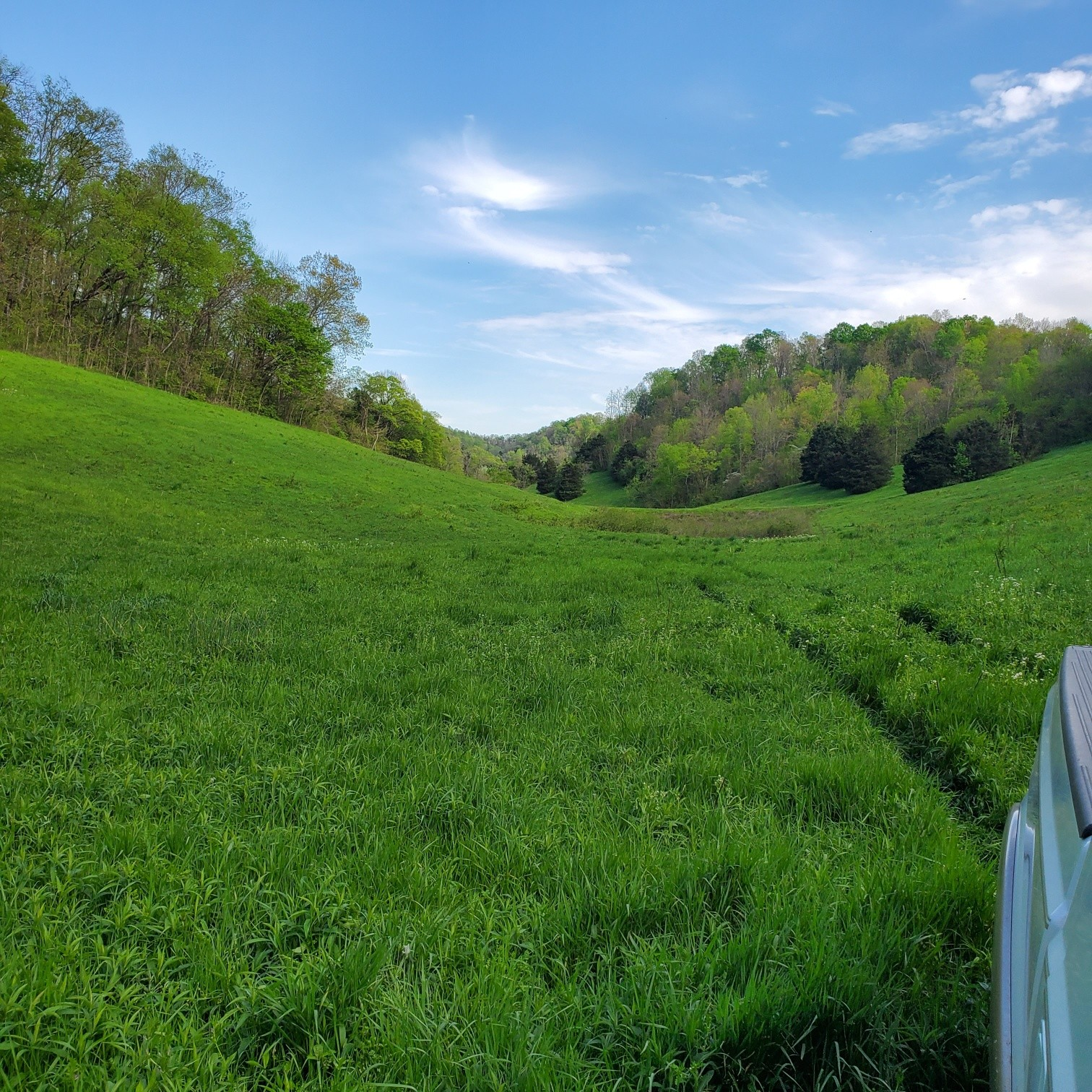 5453 Gossburg Rd Lot 8 Property Photo - Beechgrove, TN real estate listing