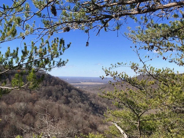 159 Little Trees Ramble, Monteagle, TN 37356 - Monteagle, TN real estate listing