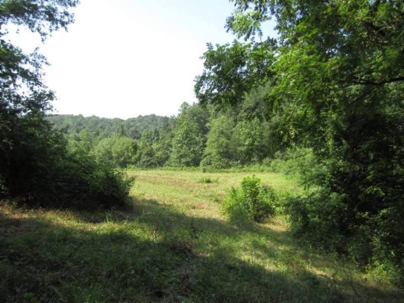 1516 f Airport Road Property Photo - Oakdale, TN real estate listing