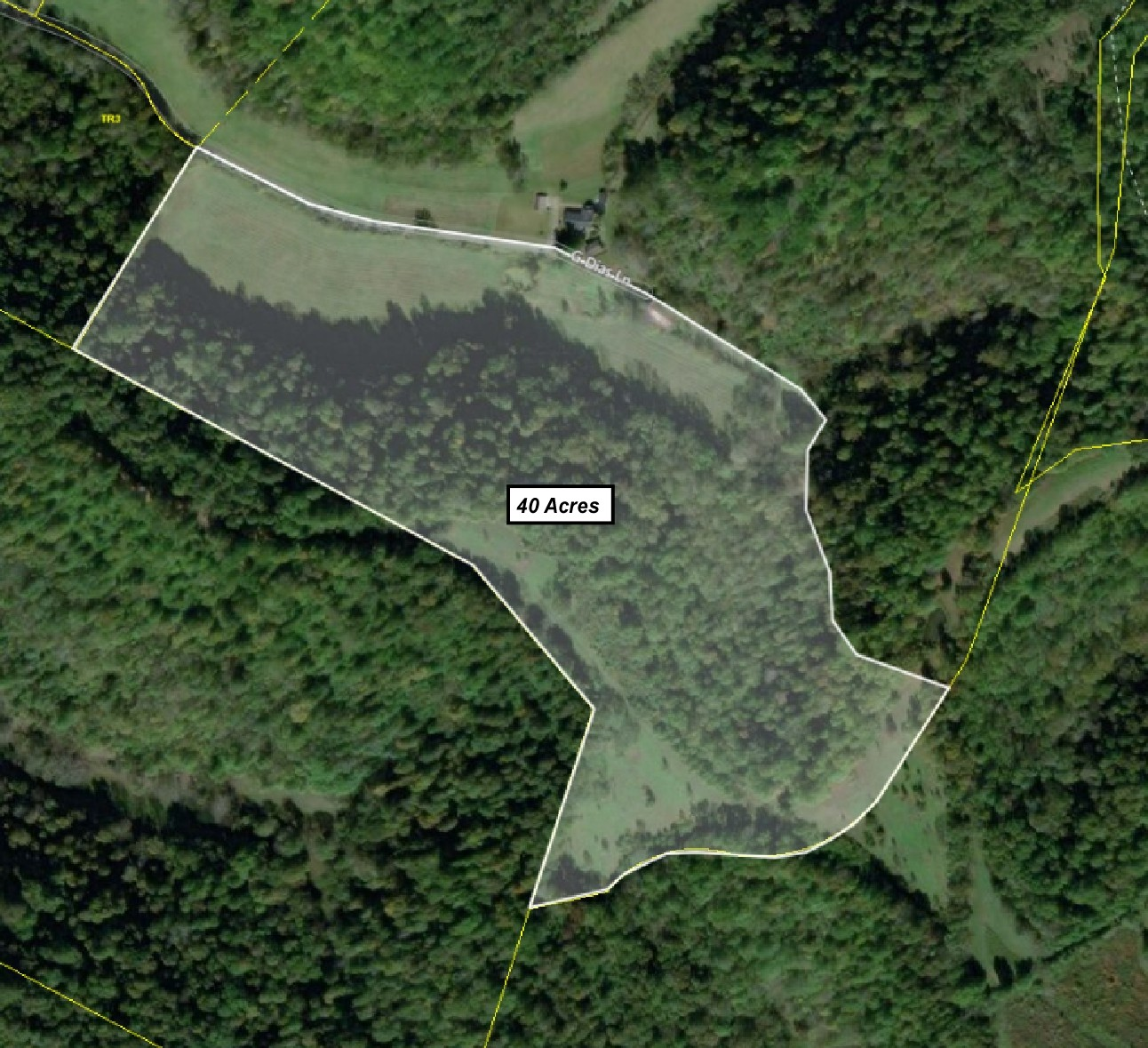 360 G Dias Ln Property Photo - Dixon Springs, TN real estate listing