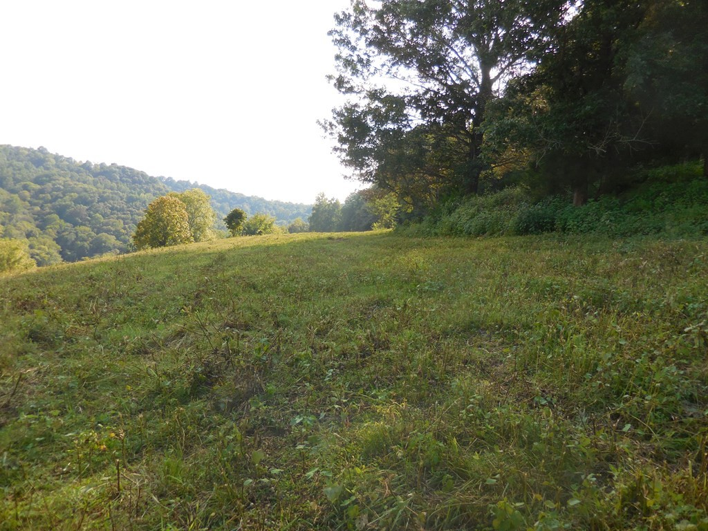 0 Woodcliff Rd Property Photo - Monterey, TN real estate listing