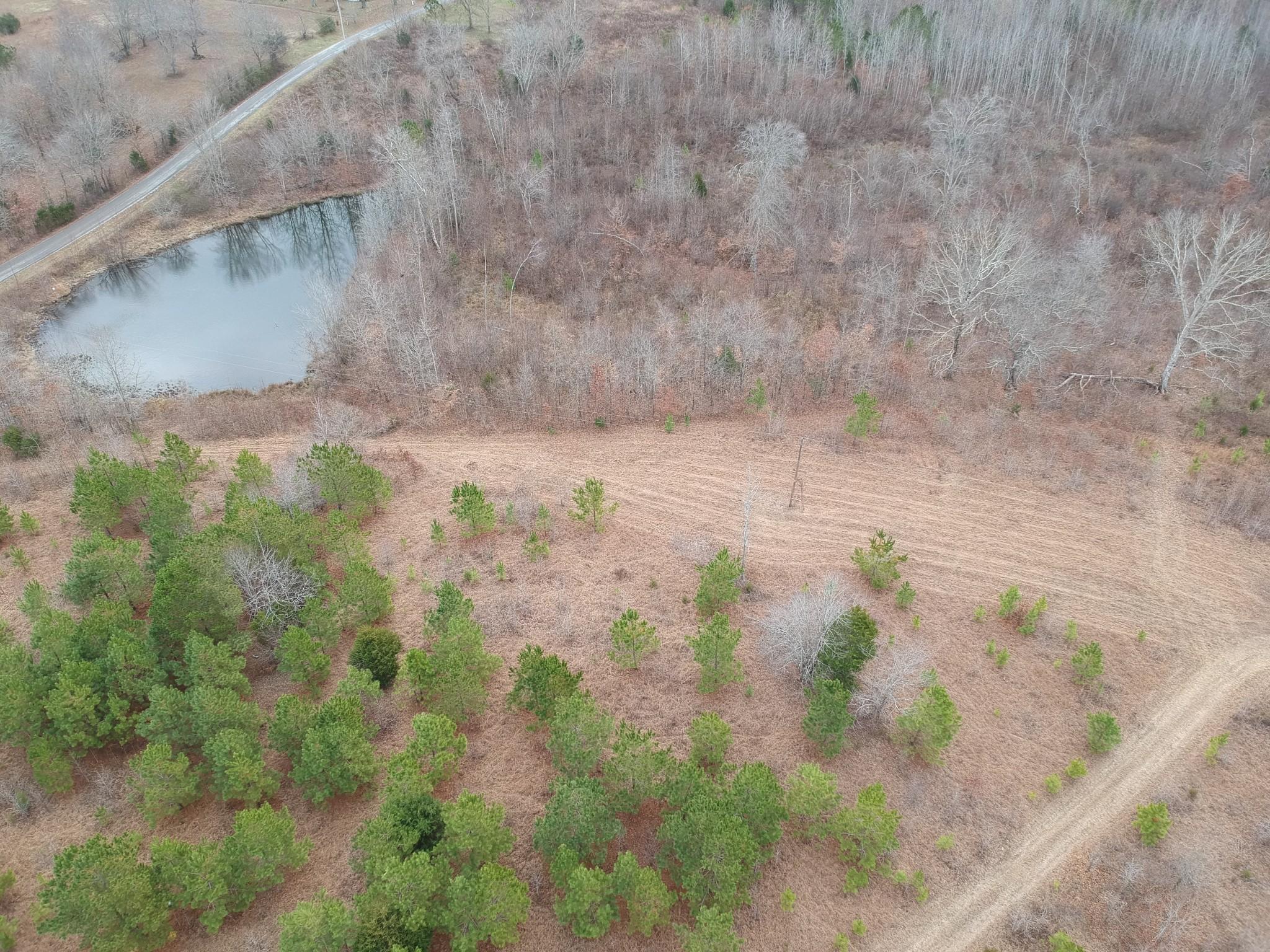 0 Little Texas Rd, Leoma, TN 38468 - Leoma, TN real estate listing