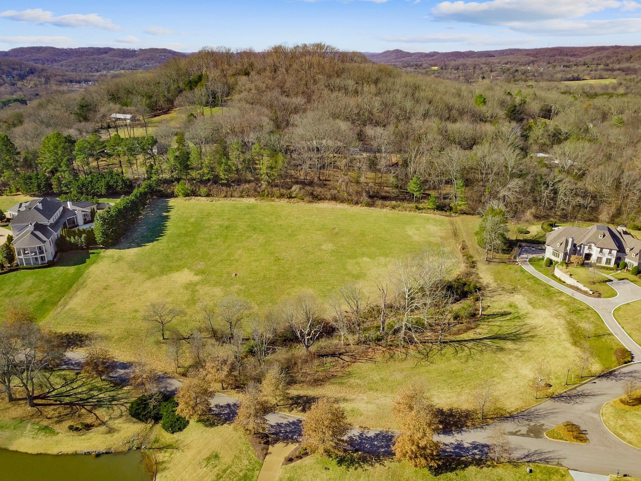 333 White Swans Xing Property Photo - Brentwood, TN real estate listing
