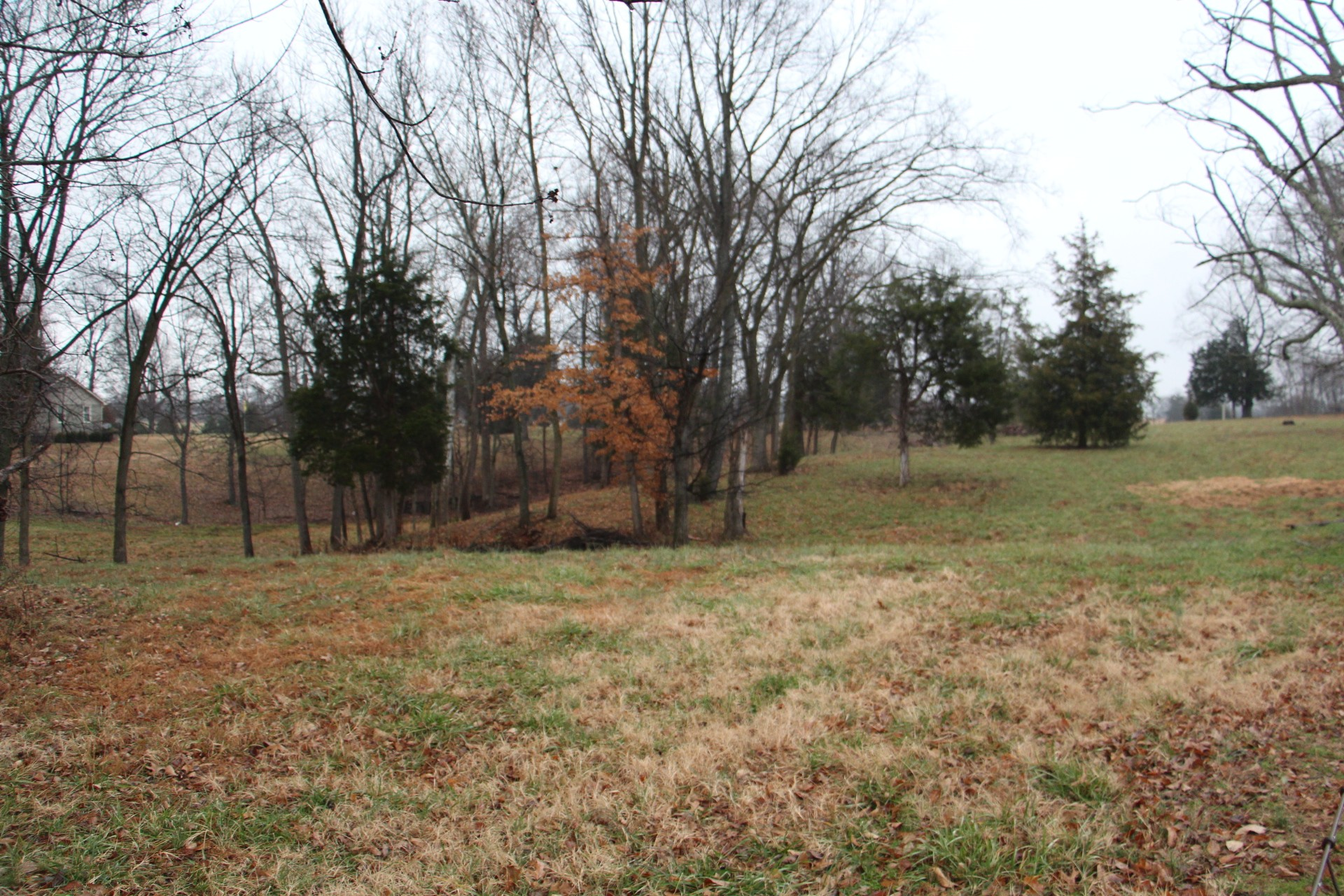 0 Hwy 49 E, E, Springfield, TN 37172 - Springfield, TN real estate listing