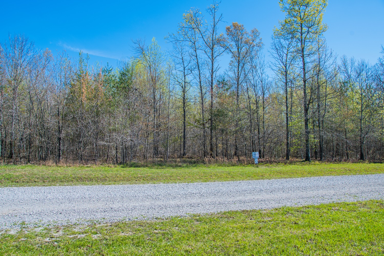 0 Camp Creek Rd Lot #67 Property Photo