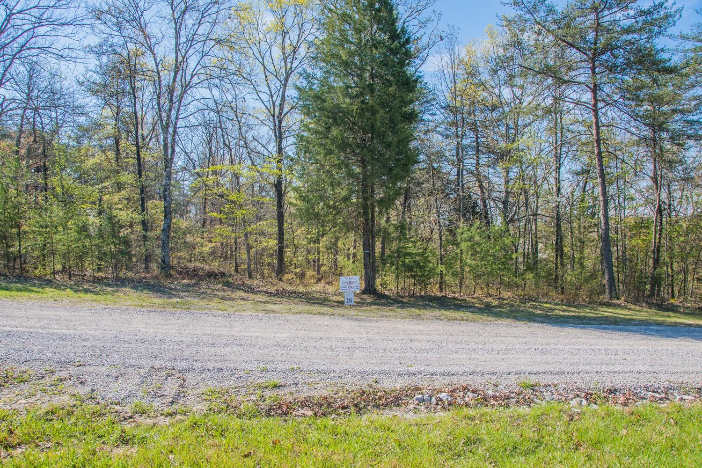 0 Camp Creek Rd Lot #17 Property Photo