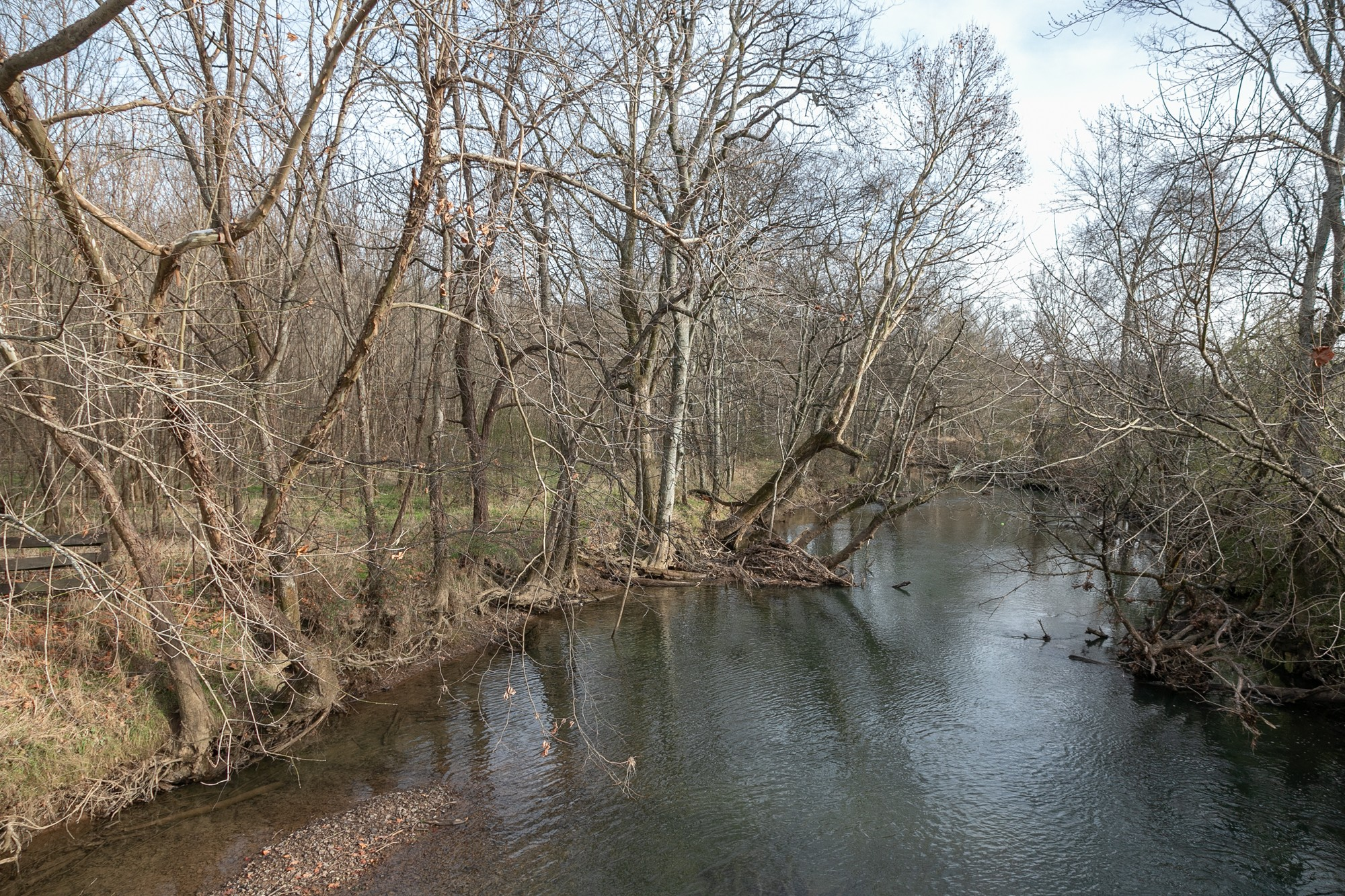 0 Minnow Branch Rd Property Photo - Lynnville, TN real estate listing