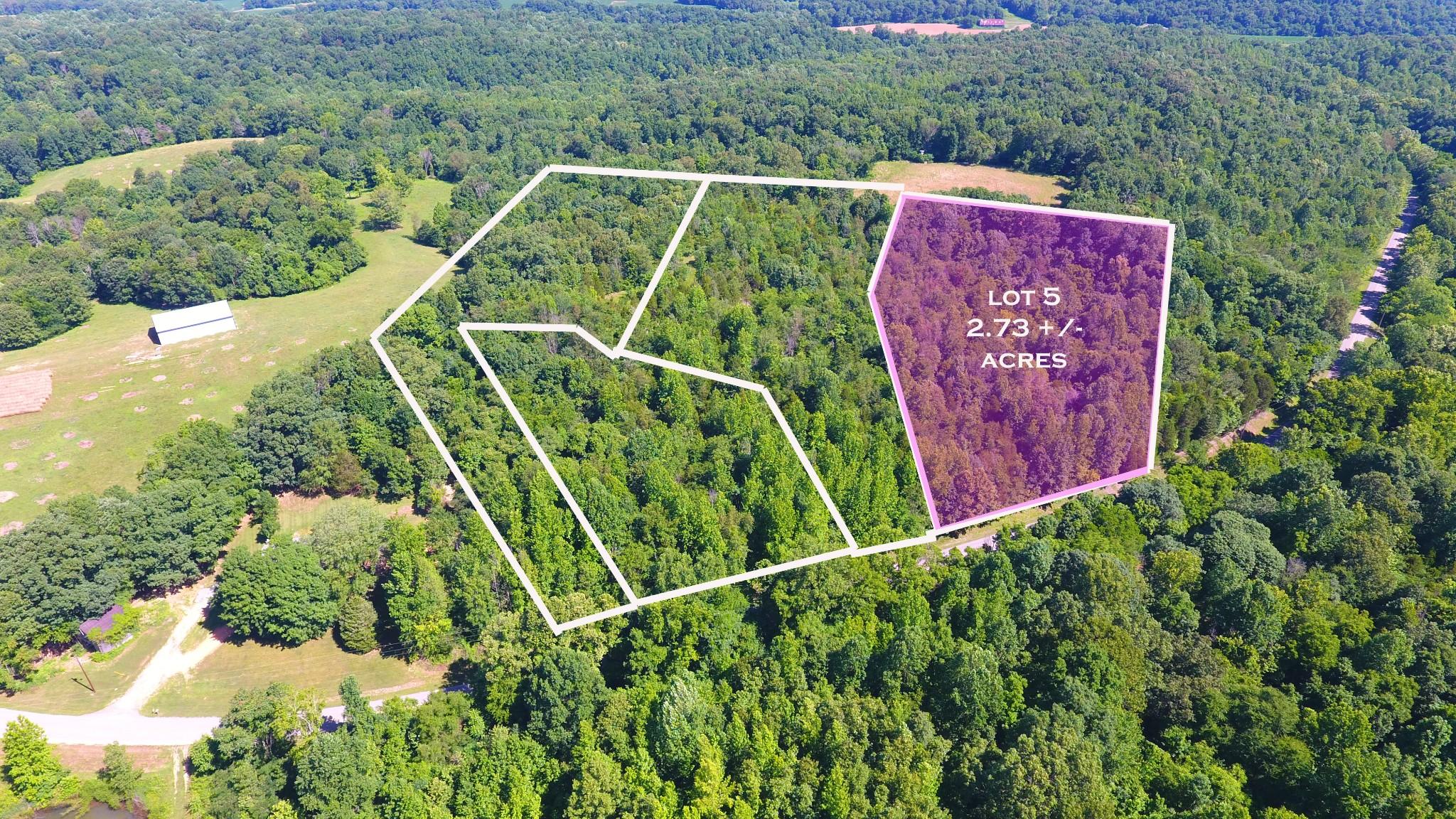5 Old Highway 48 (Lot 5), Cunningham, TN 37052 - Cunningham, TN real estate listing