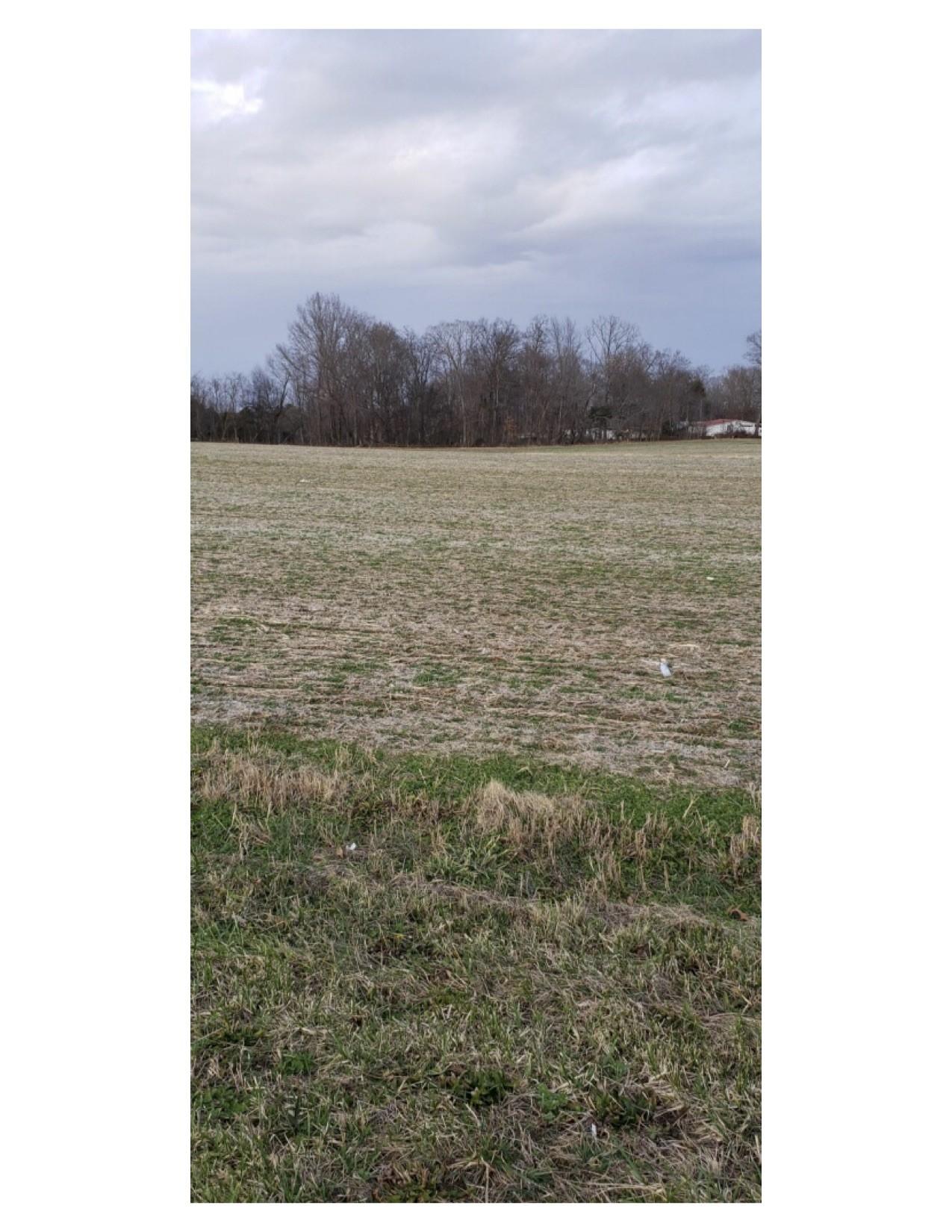 0 Cedar Grove Rd, Cross Plains, TN 37049 - Cross Plains, TN real estate listing