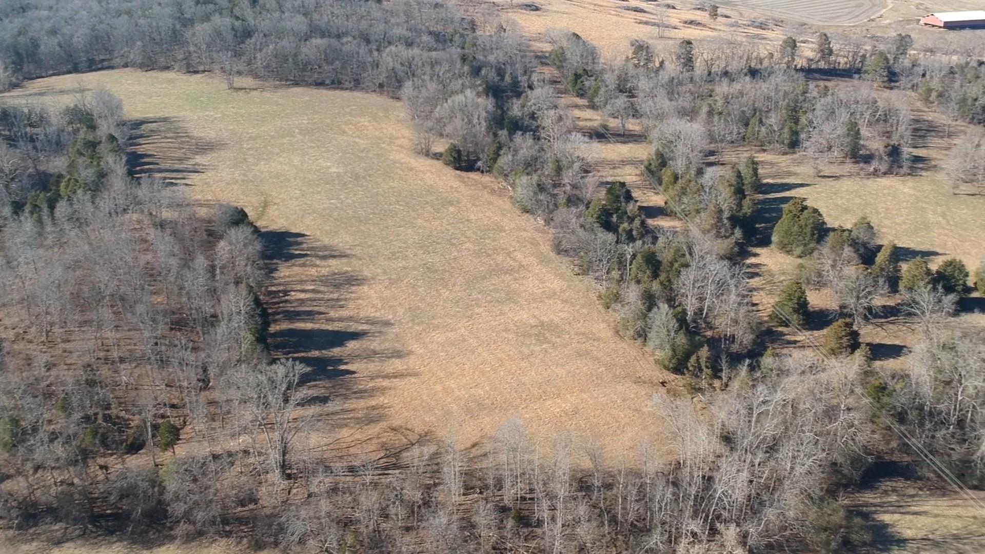 0 Hogans Creek Rd Property Photo - Carthage, TN real estate listing
