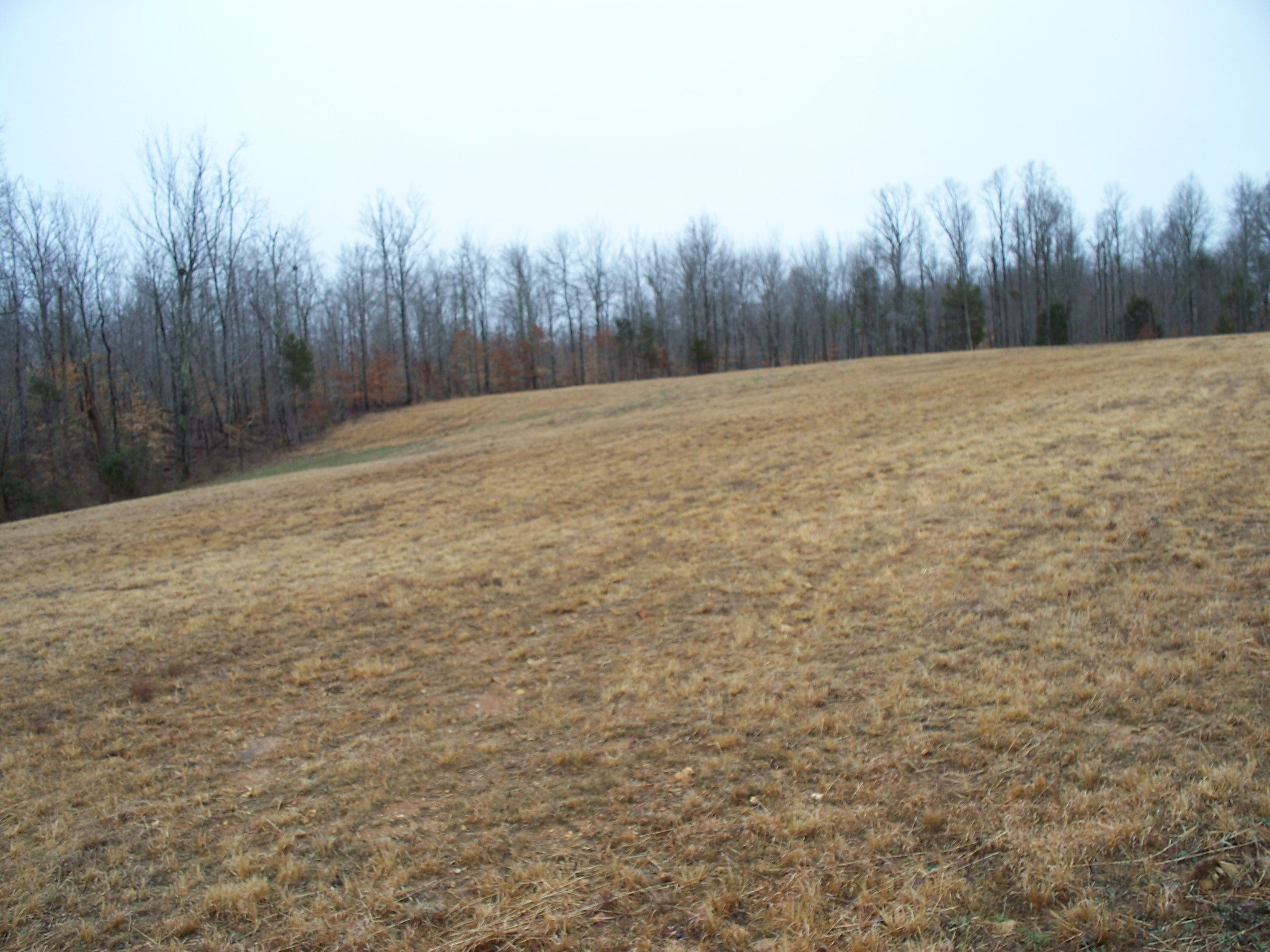 0 Pea Ridge Rd Property Photo - Liberty, TN real estate listing