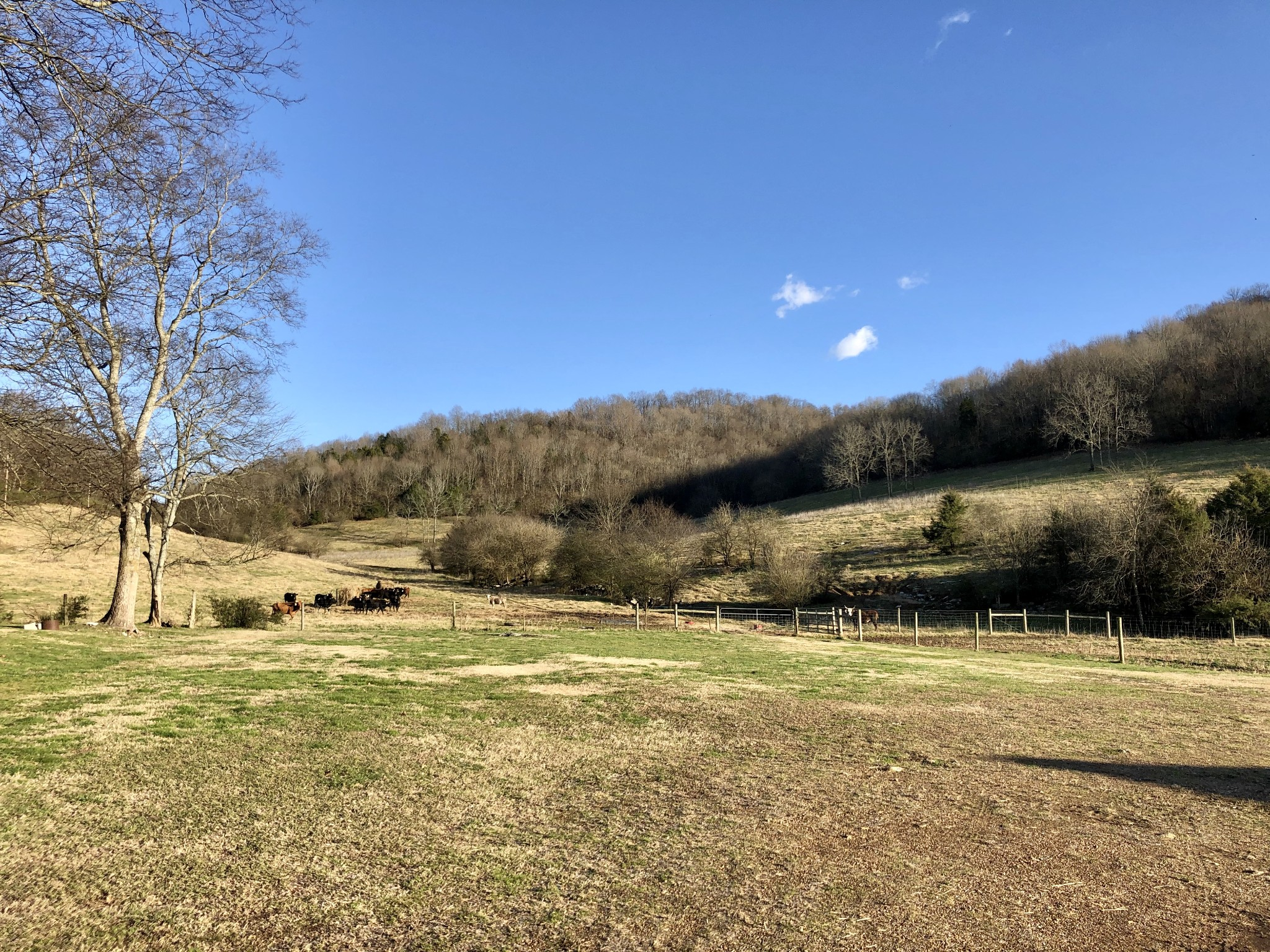2713 Toll Gate Rd Property Photo - Petersburg, TN real estate listing