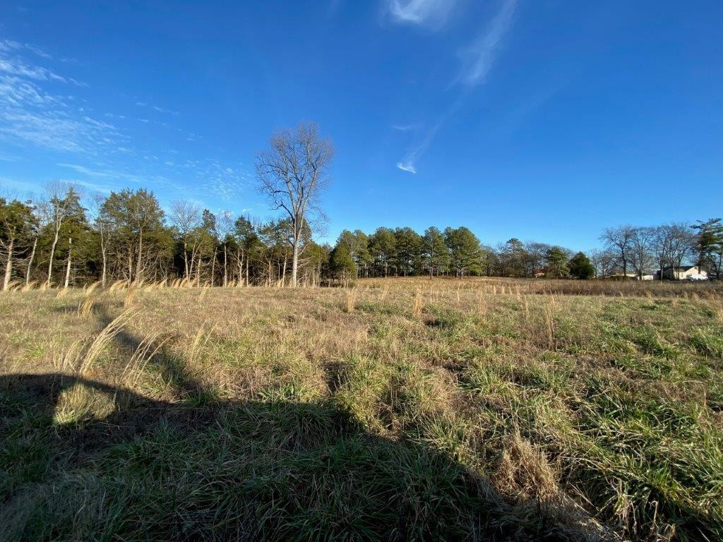 21.32 Acres Real Estate Listings Main Image