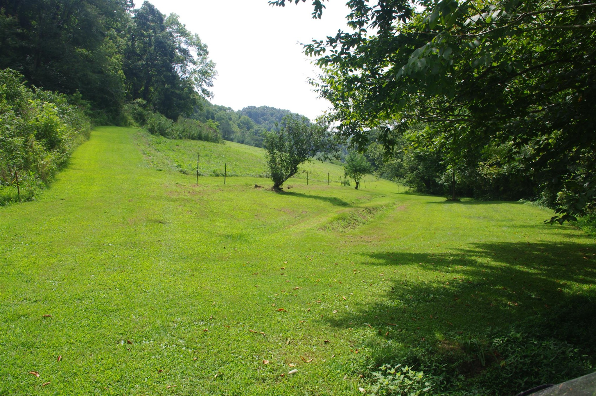 670 Ellis Hollow Ln Property Photo - Dixon Springs, TN real estate listing