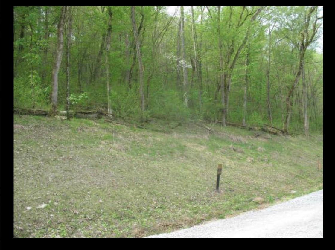86 Lake View Drive, Smithville, TN 37166 - Smithville, TN real estate listing