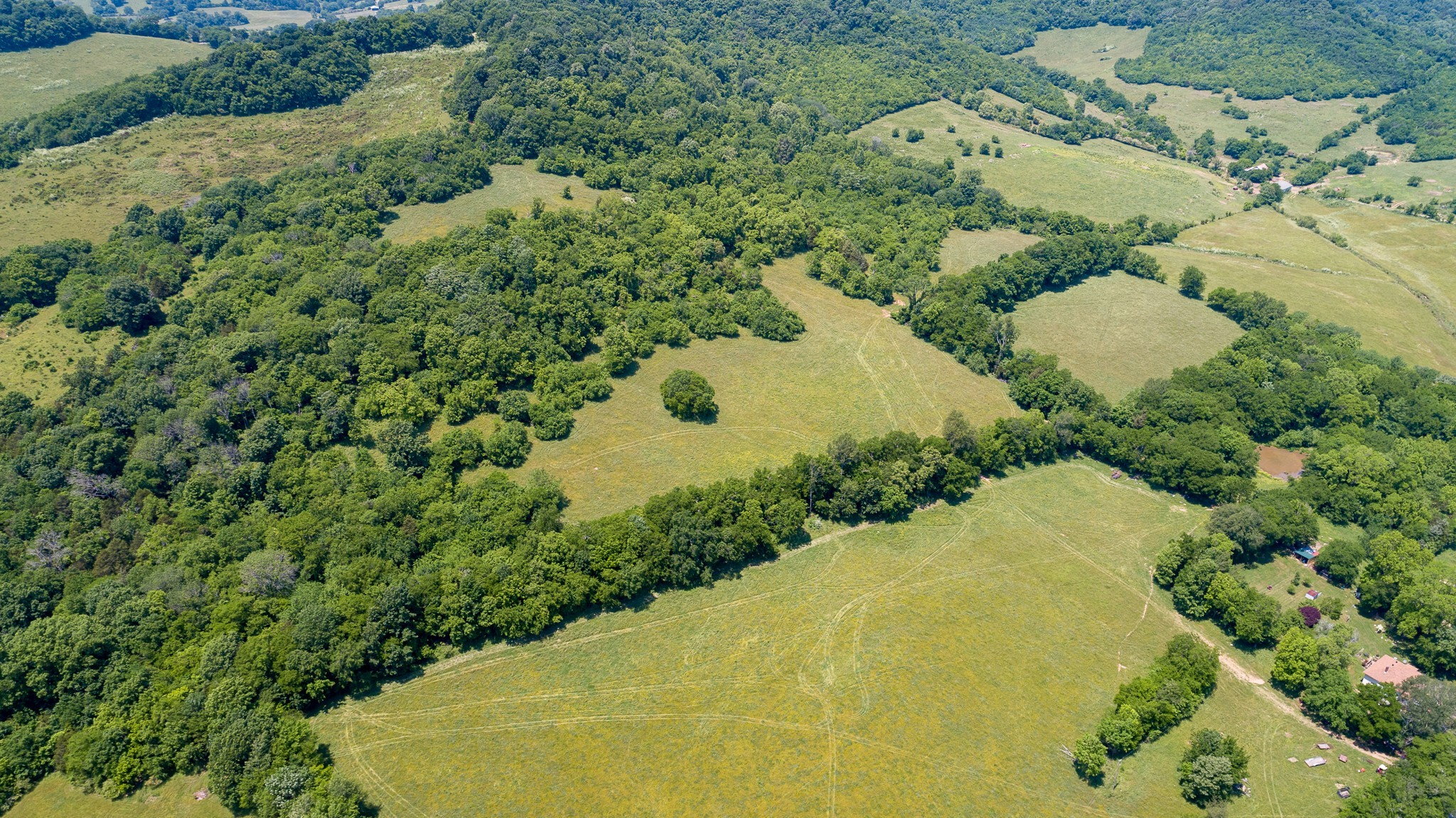 0 Bledsoe Rd Property Photo - Petersburg, TN real estate listing