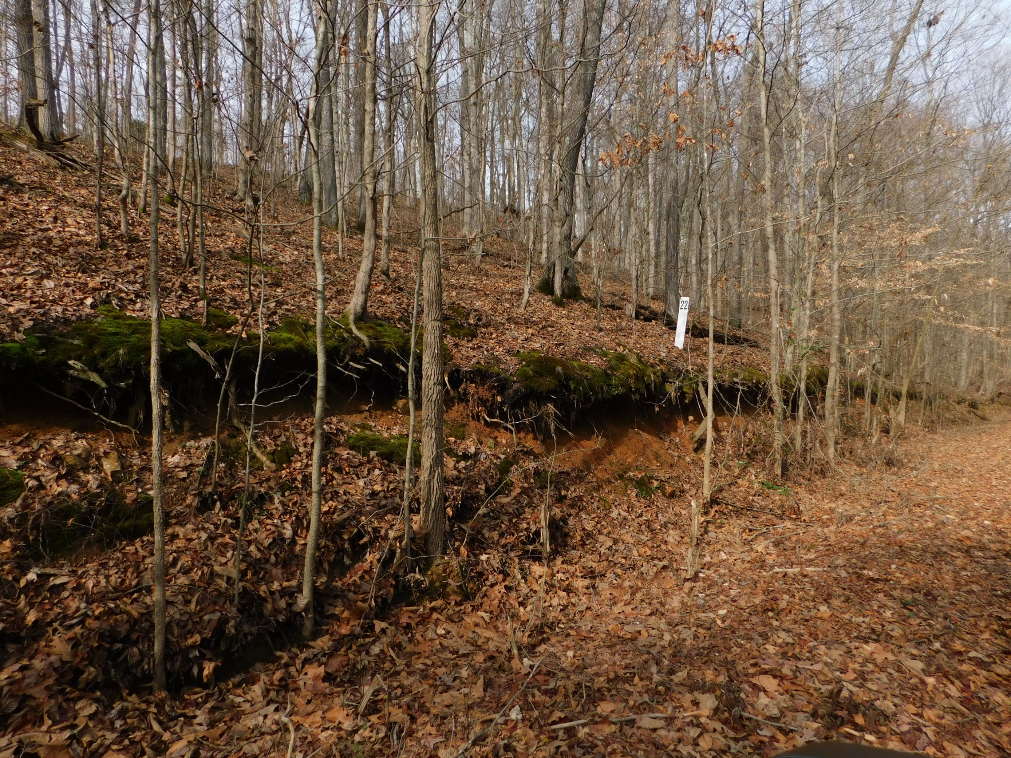 0 Lee's Point Road, Waverly, TN 37185 - Waverly, TN real estate listing