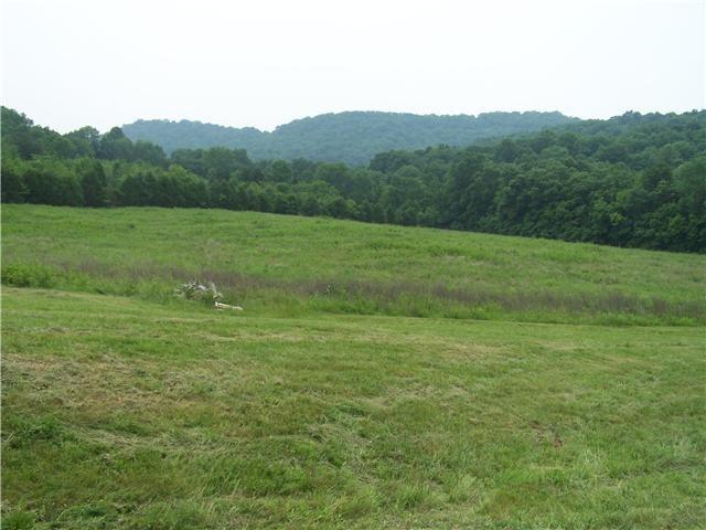 3 John Bragg Hwy, Woodbury, TN 37190 - Woodbury, TN real estate listing