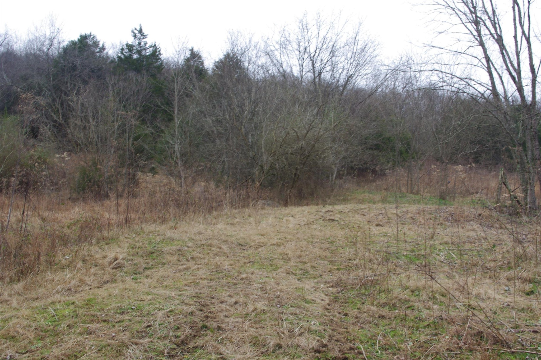 1471 Alexandria to Dismal Property Photo - Liberty, TN real estate listing