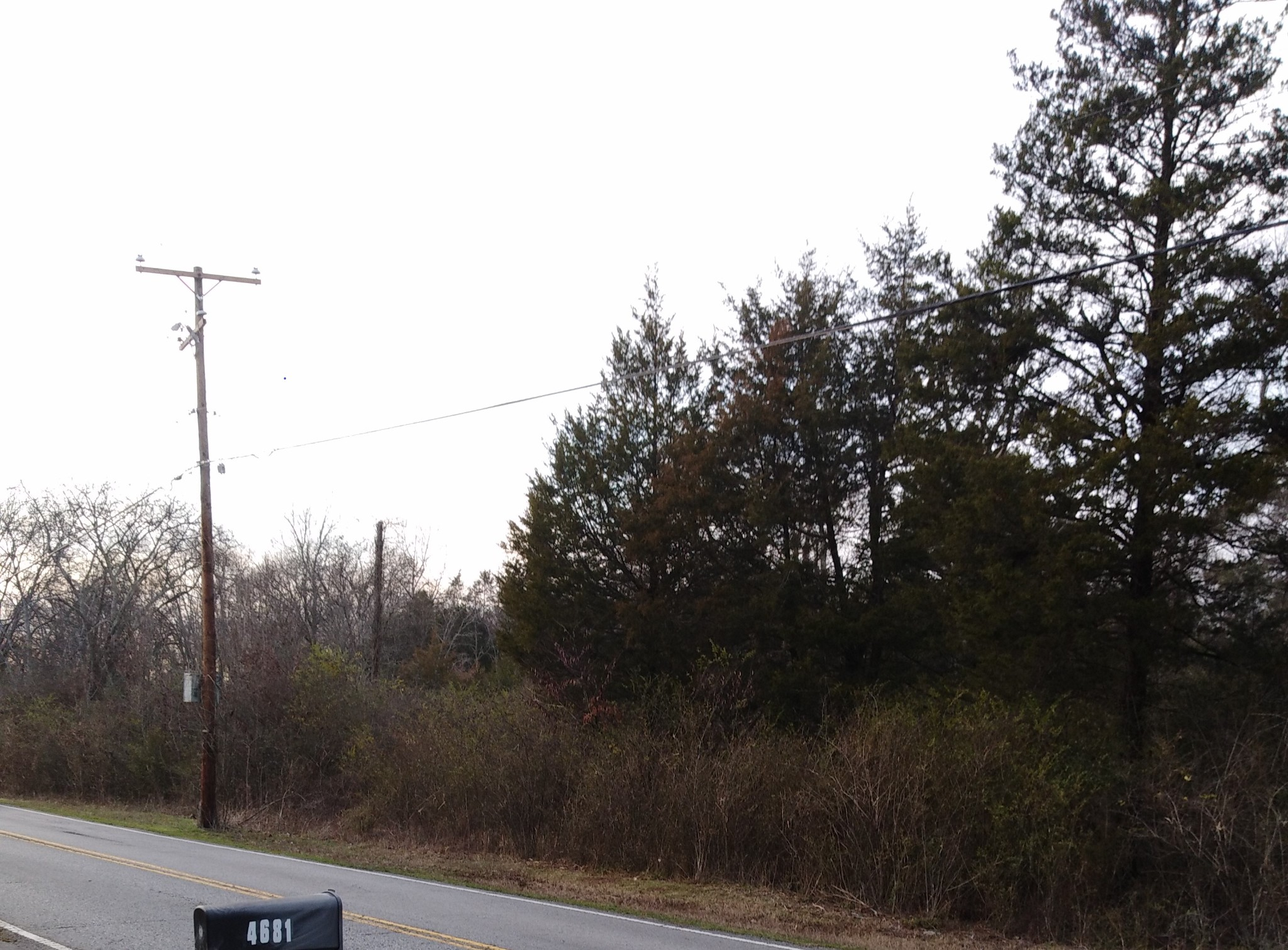 4682 Chandler Rd Property Photo - Hermitage, TN real estate listing