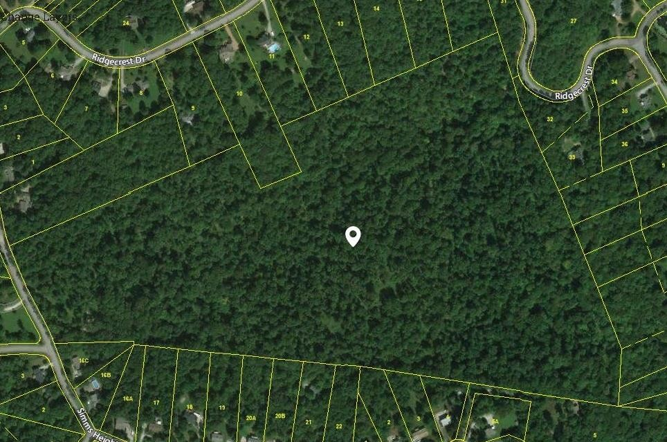 1230 Simms Heights Rd Property Photo - Kingston Springs, TN real estate listing