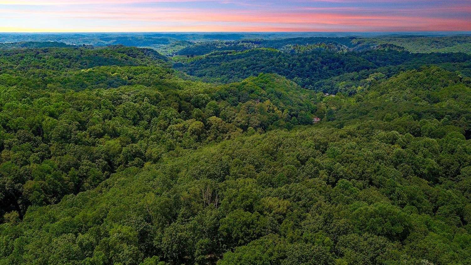 6078 Fire Tower Rd Property Photo - Nashville, TN real estate listing
