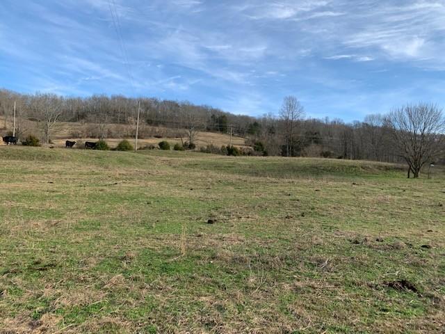 0 Dillard Creek Rd, Elmwood, TN 38560 - Elmwood, TN real estate listing