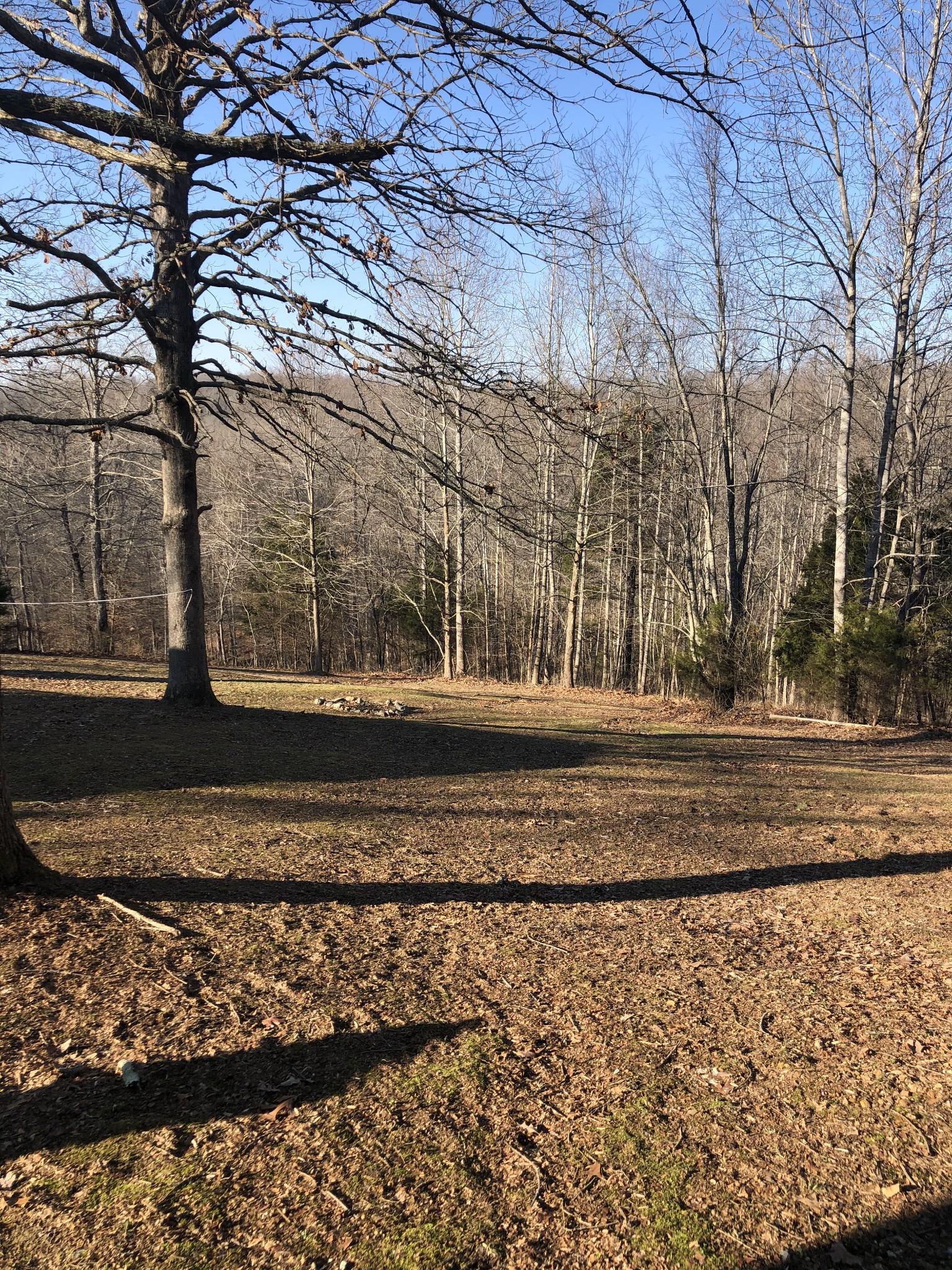 925 Smith Pl, Cunningham, TN 37052 - Cunningham, TN real estate listing