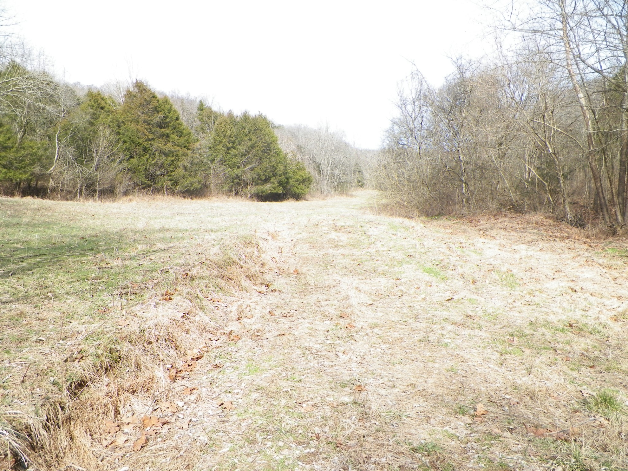 0 Pleasant Valley Road Property Photo - Lafayette, TN real estate listing