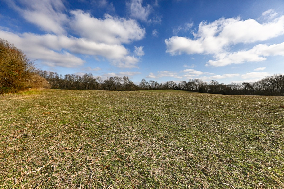0 Briar Patch Road, Prospect, TN 38477 - Prospect, TN real estate listing
