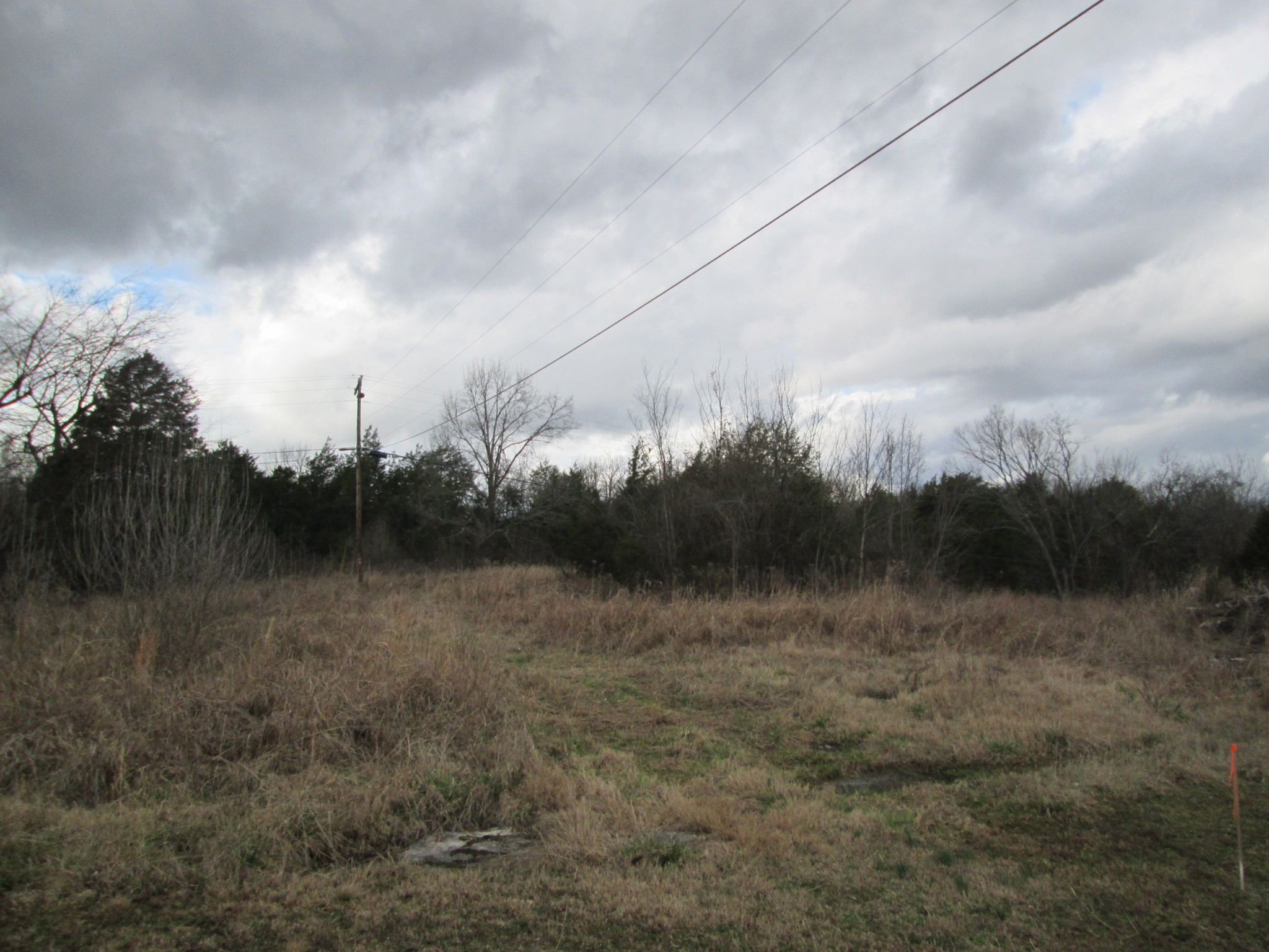 0 Linwood RD Property Photo - Watertown, TN real estate listing
