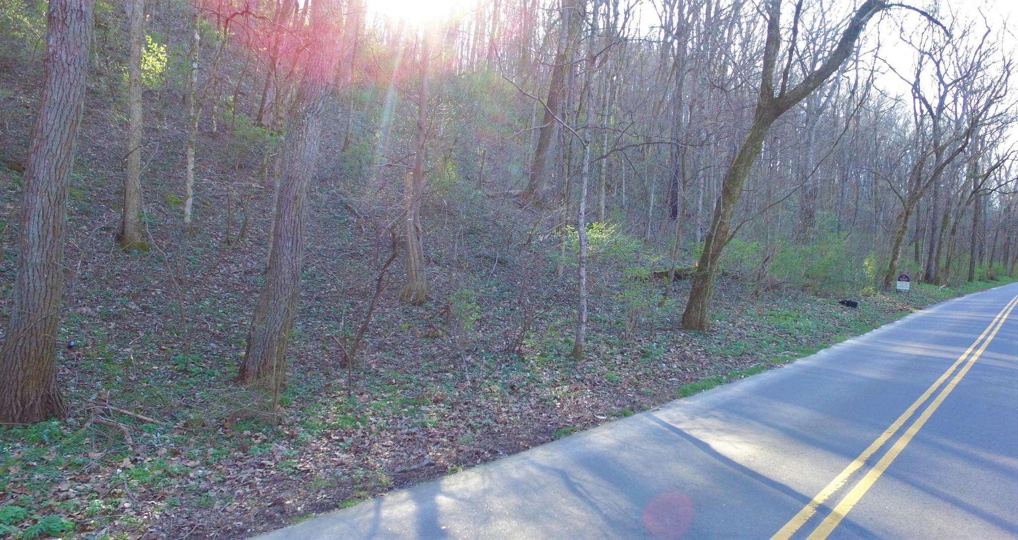 0 Dry Fork Rd, Whites Creek, TN 37189 - Whites Creek, TN real estate listing
