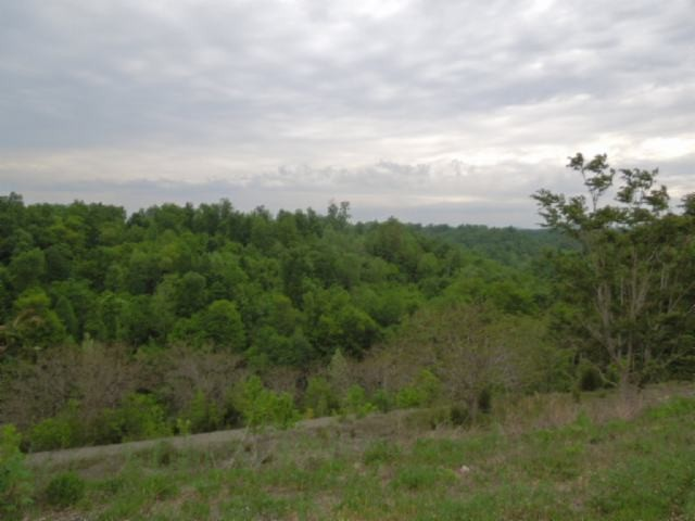 156 .13 Ac. Clay County Hwy , Celina, TN 38551 - Celina, TN real estate listing