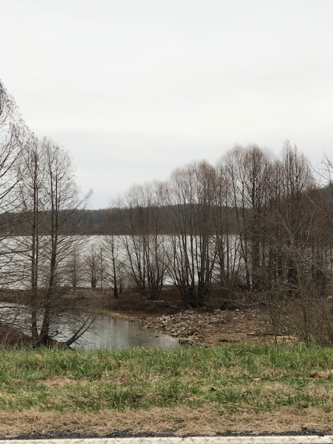 0 Waterfowl Rd Property Photo - Murray, KY real estate listing