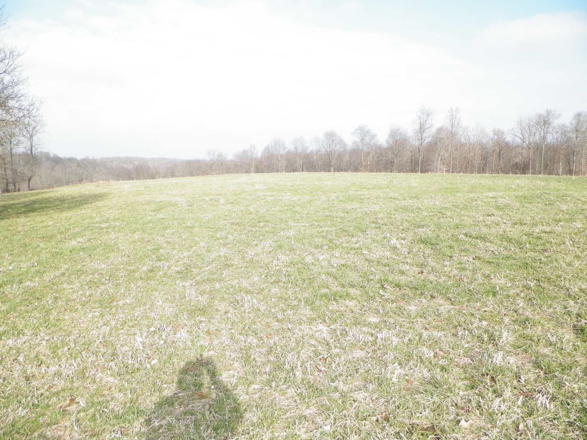 0 Green Valley Rd, Lafayette, TN 37083 - Lafayette, TN real estate listing
