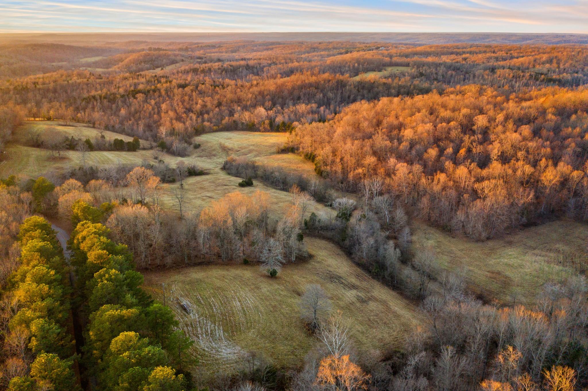 3001 Benton Ridge Rd Property Photo - Palmyra, TN real estate listing