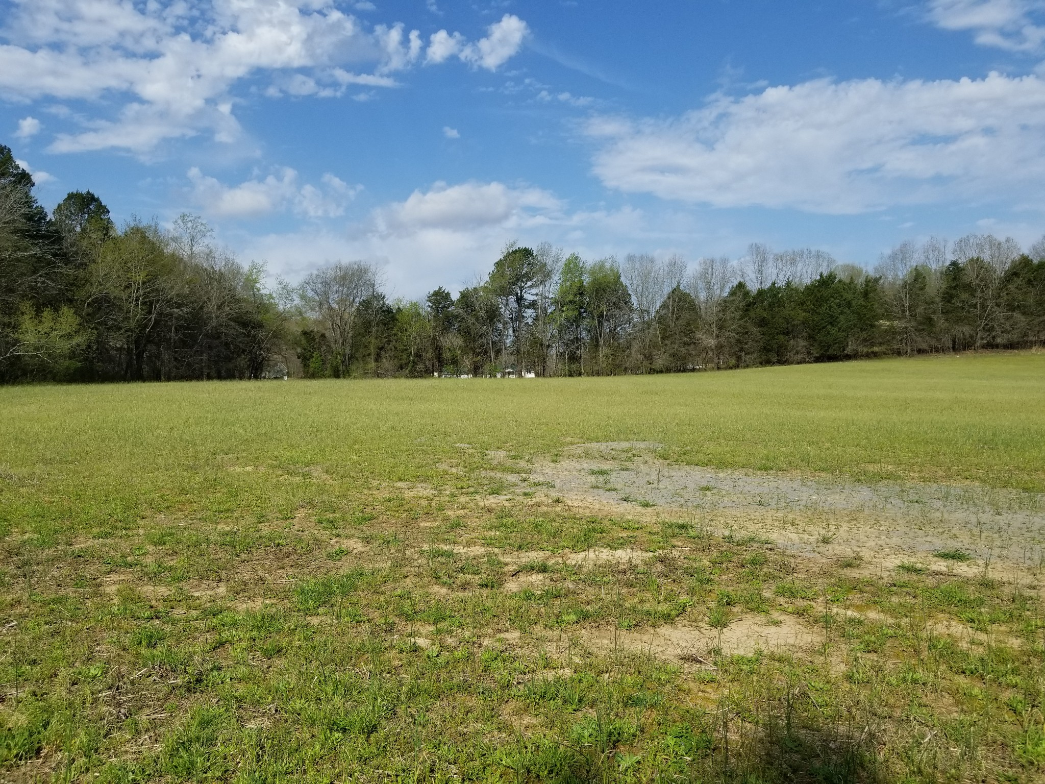 989 Britton Springs Rd, Clarksville, TN 37042 - Clarksville, TN real estate listing