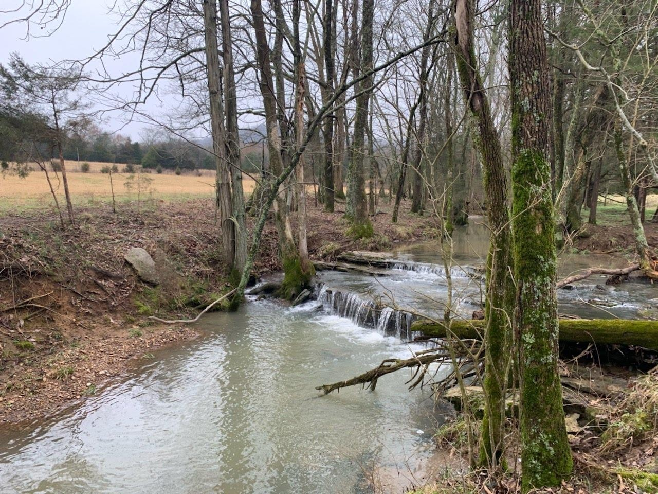 0 William Lane, Readyville, TN 37149 - Readyville, TN real estate listing