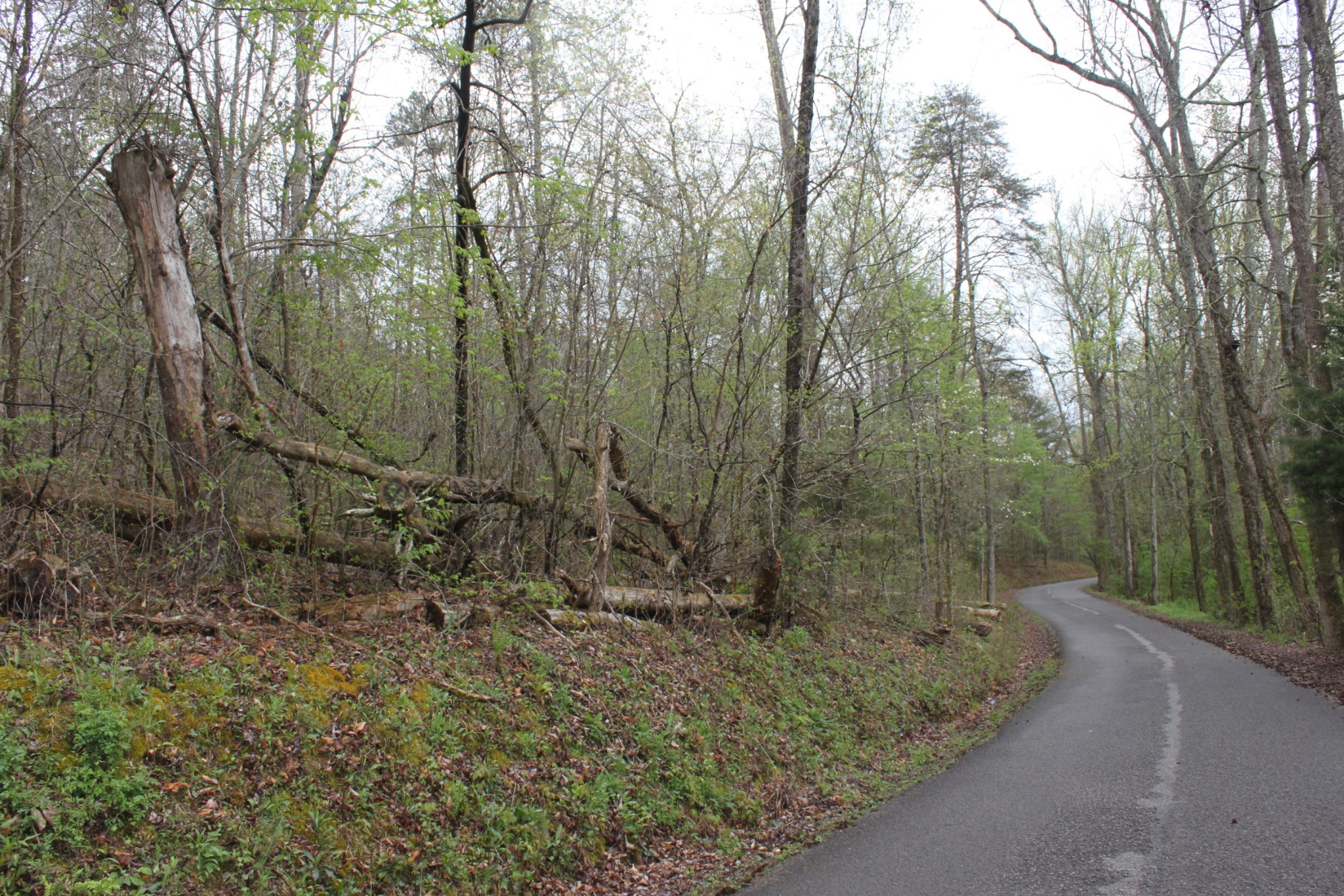 72 Frank Tate Road Property Photo - Whitwell, TN real estate listing