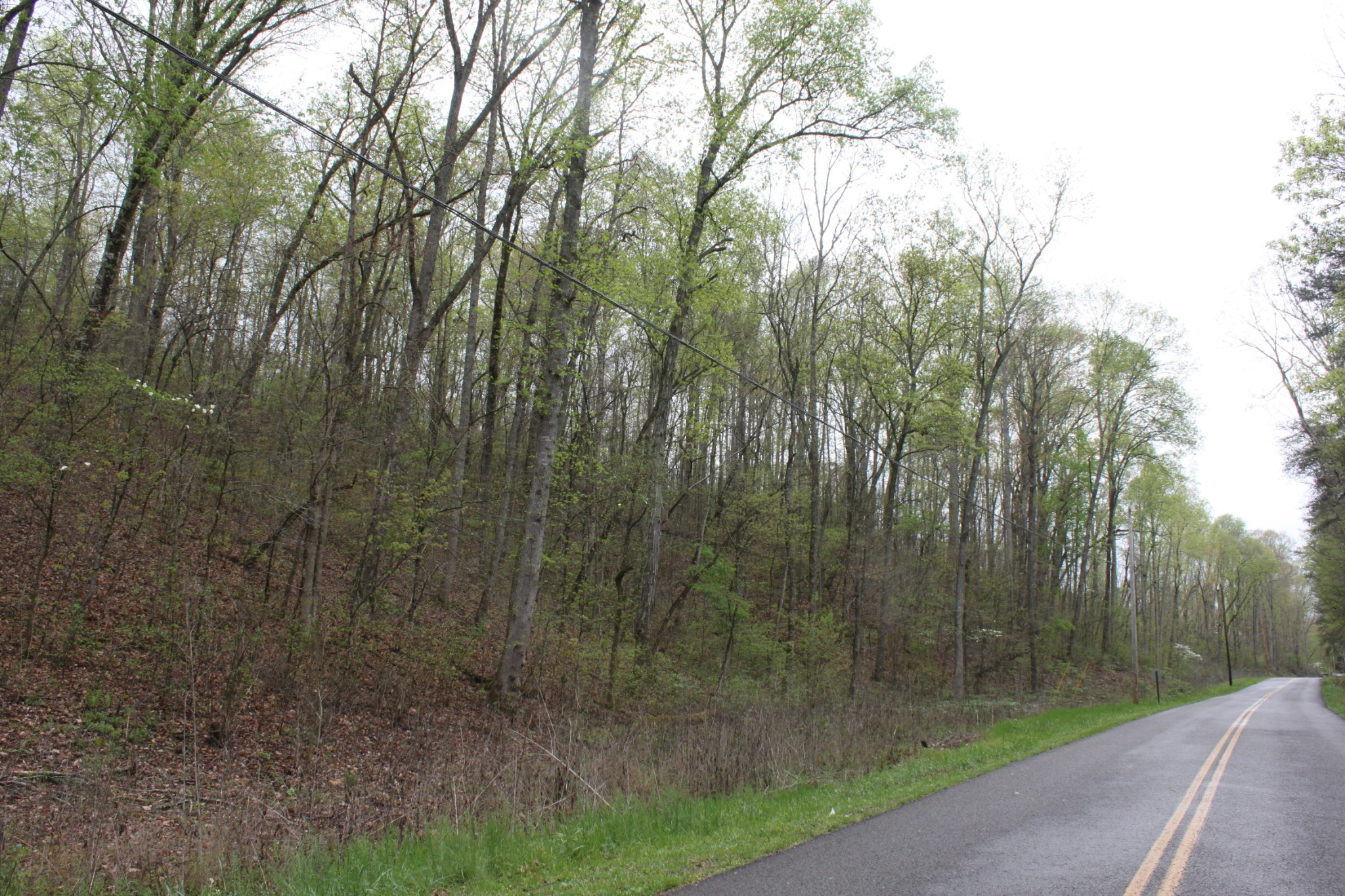 59 Frank Tate Road Property Photo - Whitwell, TN real estate listing
