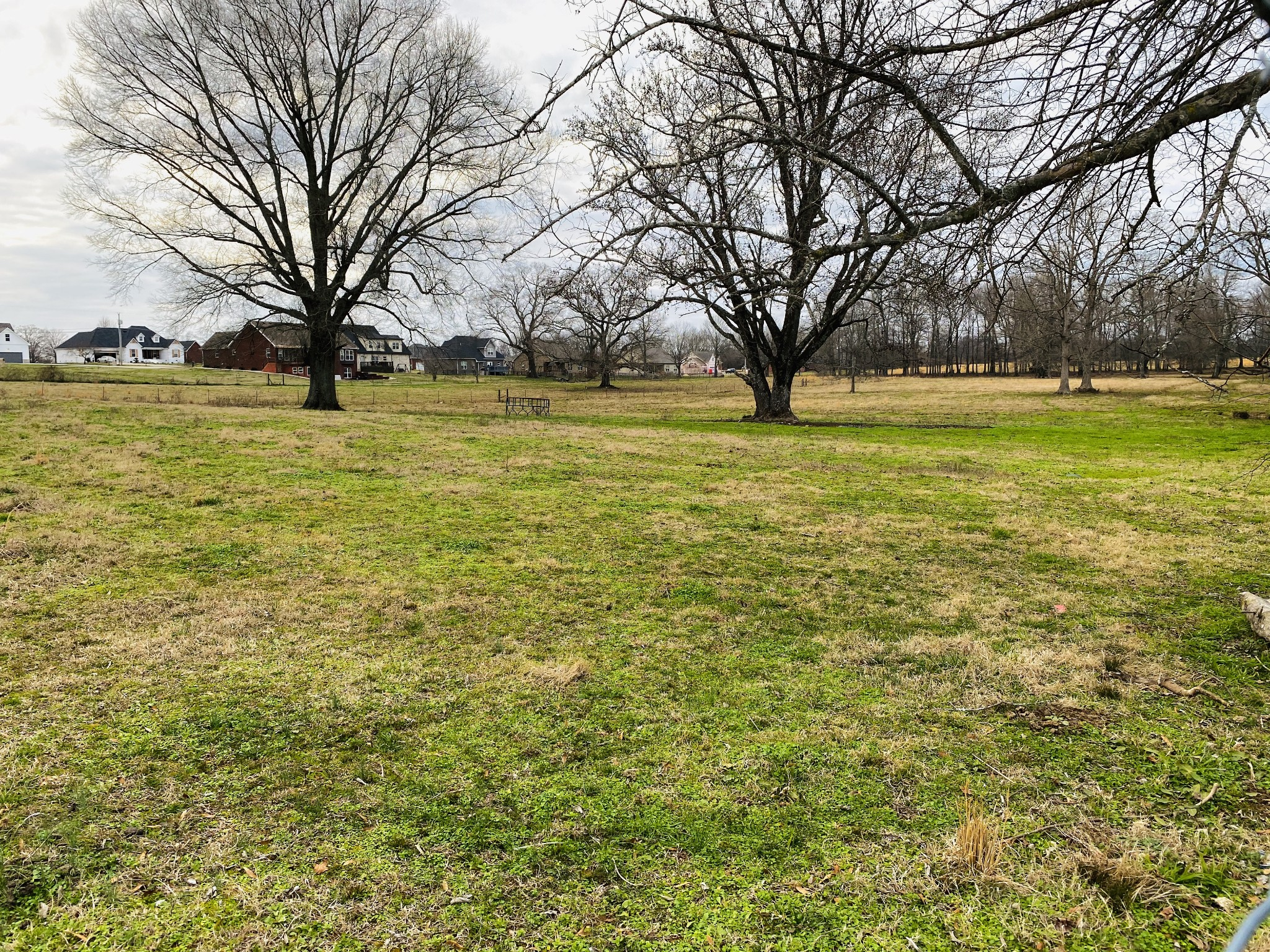0 Allen Ferry RD Property Photo - Smithville, TN real estate listing
