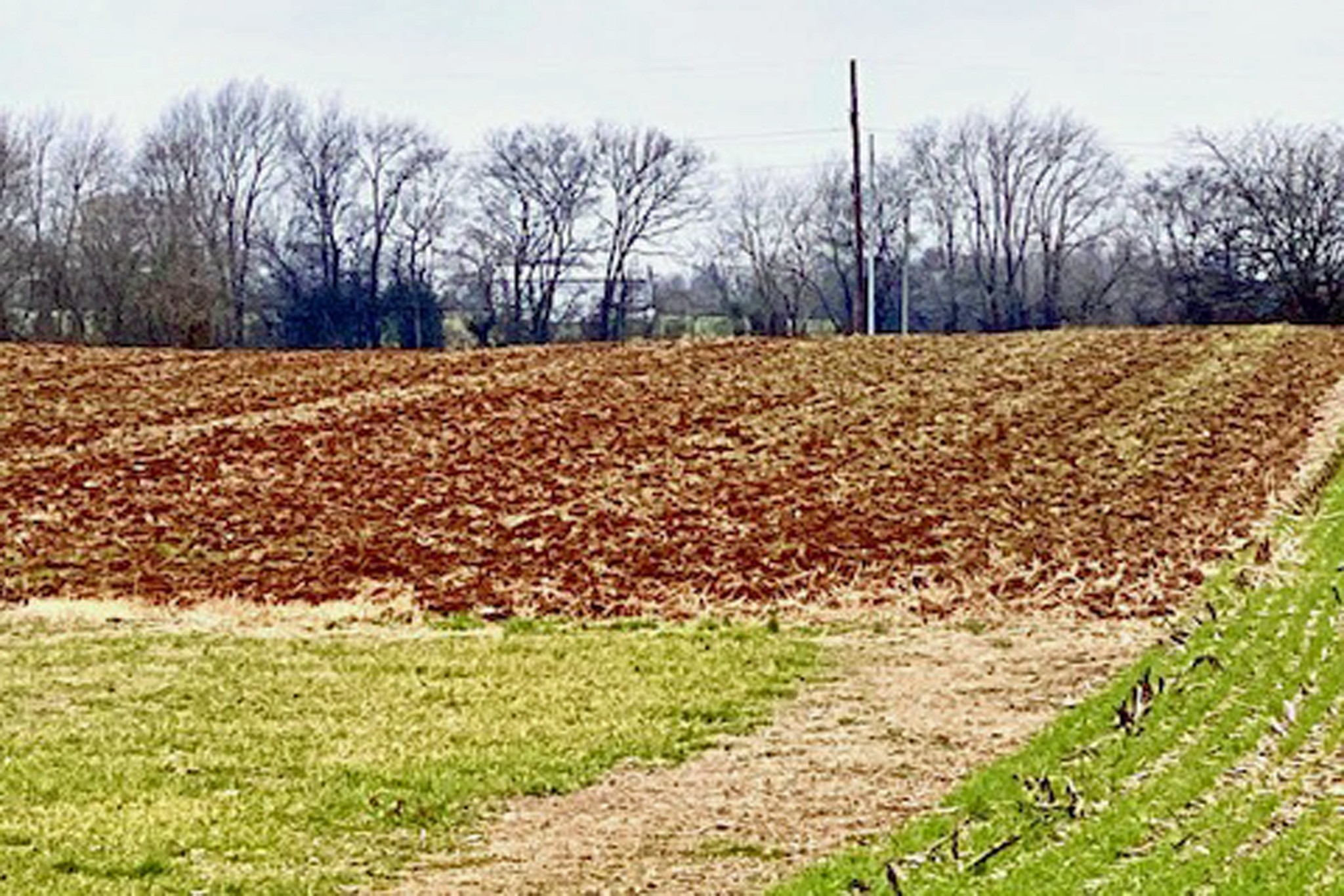 0 Lot Blackjack Rd/North St, Franklin, KY 42134 - Franklin, KY real estate listing