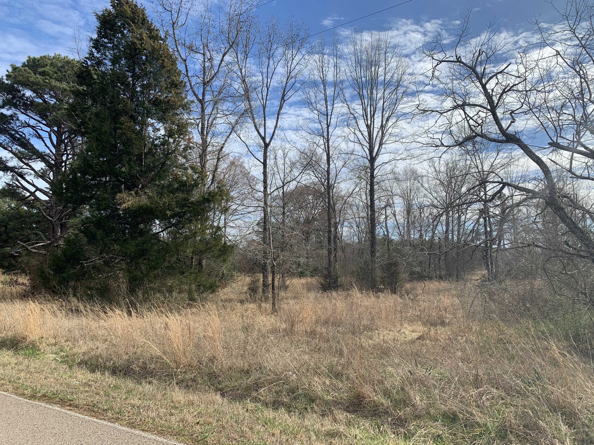 0 Hwy 142 Property Photo - Counce, TN real estate listing